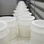 Moulage - Fabrication fromage - Onetik