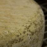 Cave d'affinage - Affinage 3 mois - Fromage basque - Onetik